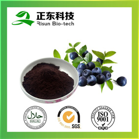 Bilberry Extract---High Concertration of Anthocyanins