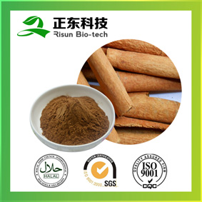 Cinnamon Bark Extract--A Source of Micronutrients--VitaminK