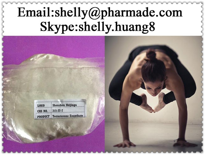 Testosterone Enanthate Powder shelly@pharmade.com