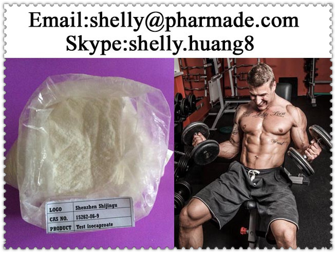 Testosterone Isocaproate Powder shelly@pharmade.com