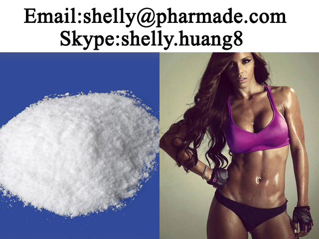 Procaine Hydrochloride Powder Procaine Hydrochloride Powder shelly@pharmade.com