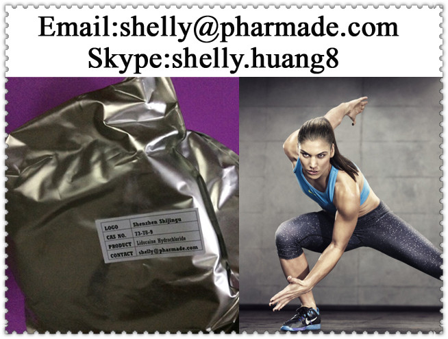 Lidocaine Hydrochloride Powder shelly@pharmade.com