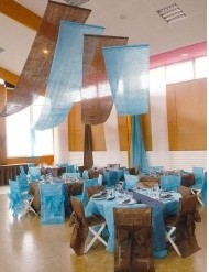 Nonwoven Chair Covers And Tentures