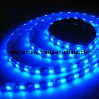 LED  lights  strip  blue 5050B30R-W12