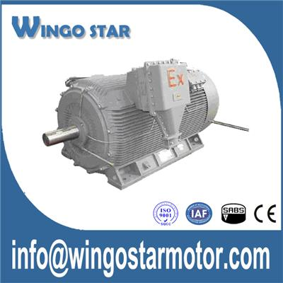 High Voltage Explosion Proof Motor