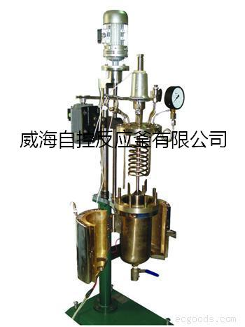 Magnetic stirring  high pressure reactor for lab