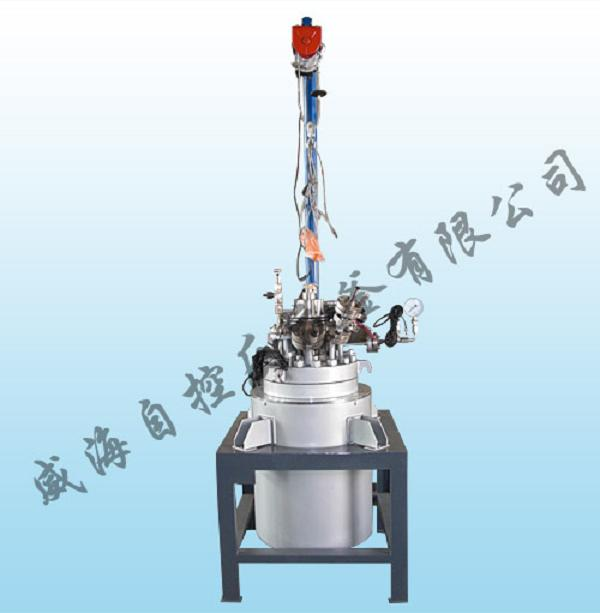 Magnetic stirring stainless steel reactor