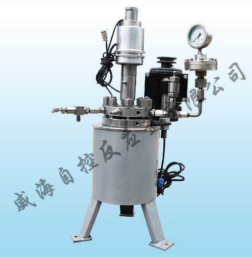 WHF Lab series magnetic stirring reactor