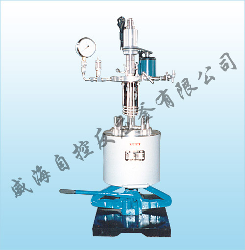 WHFS Lab series magnetic stirring reactor