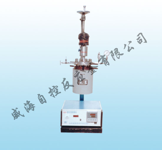 WDFS  lab  series magnetic stirred reactor