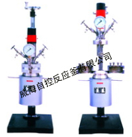 WDFSK  lab  series magnetic stirred reactor