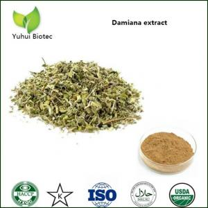 sexual enhancement Damiana Extract, men sexual power damiana powder,damiana p.e.
