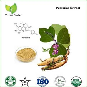 pueraria lobata extract,pueraria root extract,pueraria flavonid,kudzu root extract
