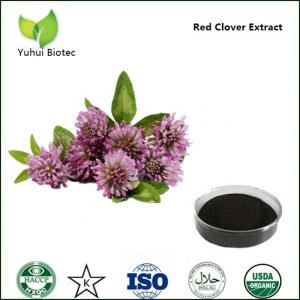 anti cancer red clover extract p.e.,red clover flower extract