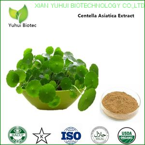 gotu kola powder,centella asiatica extract powder,centella asiatica leaf extract