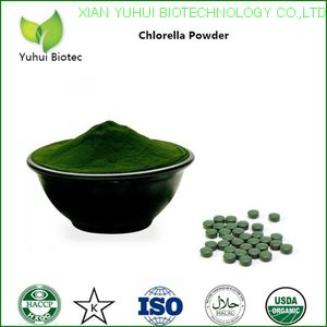 chlorella extract,chlorella extract powder,chlorella algae,bulk spirulina chlorella