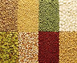 Organic chickpeas and other pulses