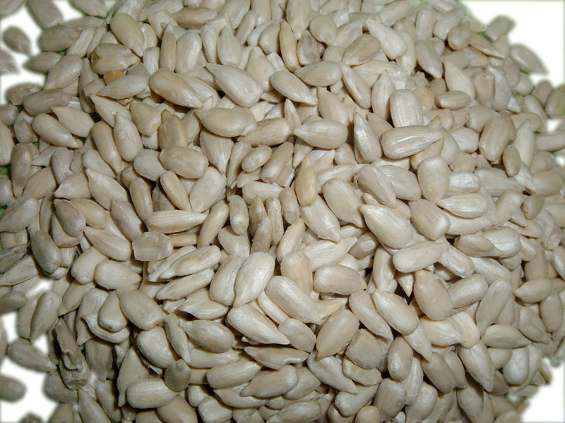 Hulled or full sunflower seeds available for immediate export
