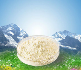 Raw Material Body Building Powder Testosterone Isocaproate