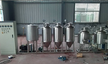 Home brewing system