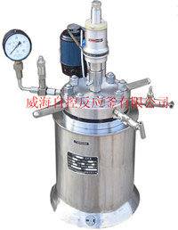 100mL-1000mL Mini stritted reactors