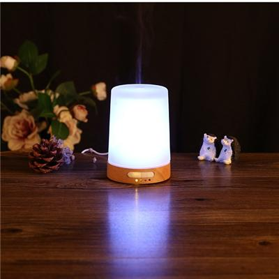 Now Ultrasonic Diffuser For Essential Oils