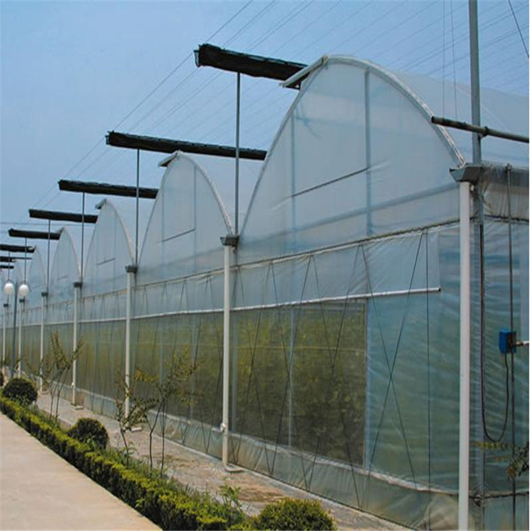 Agricultural Plastic Film Greenhouse
