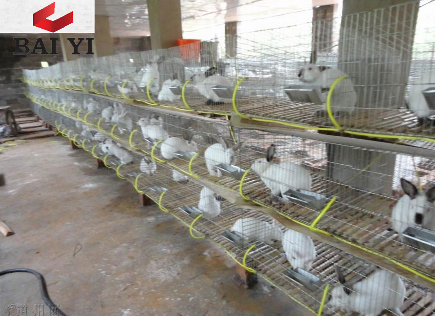 Wire Mesh Rabbit Cages for Rabbit Farm