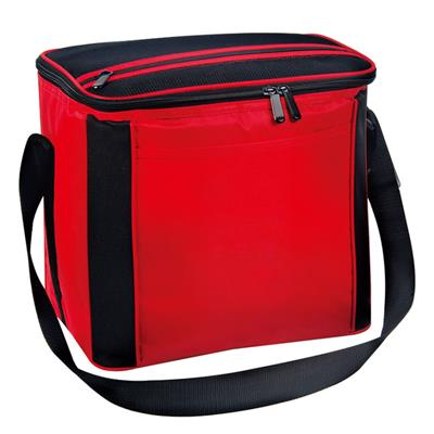 Gifted Promotional Portable Cooler Bag