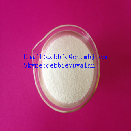 Protein Assimilation Anabolic Steroids Powder DHEA/Dehydroisoandrosterone 53-43-0 Bulking Raw Powder