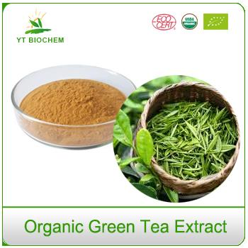 100 Organic EGCG Concentrated Decaf Cheap Green Tea Extract