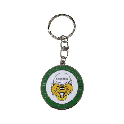 Promotional Hard Enamel Metal Coin Keychain