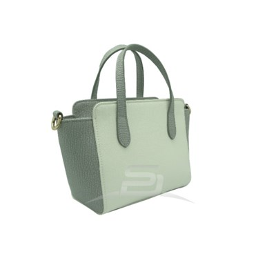 Lady Handbag With Handle And Sholder Strap