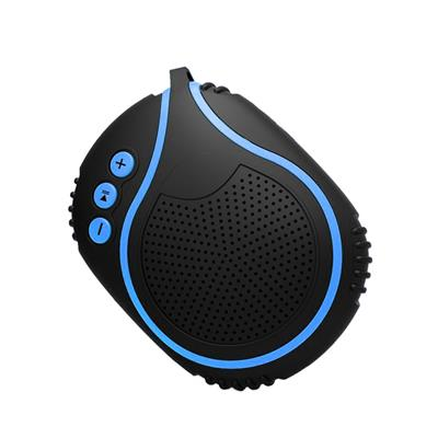 Professional Sport Bluetooth Speaker