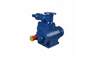 Twin Screw Pump With Safety Valve