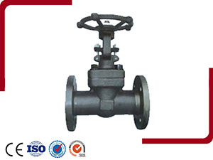 Forged Steel Flange And Butt-Welded Gate Valve