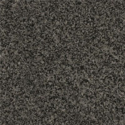South African Nero Impala Black Color Granite Tiles Slabs Worktops