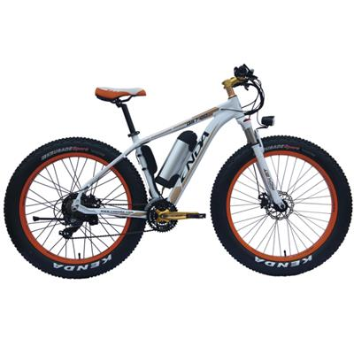 Hot Sell 26 Inch Snow Ebike For Adult With 21 Speed