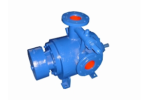 Internal Bearing Twin Screw Pump