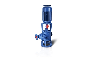 Verticcal Twin Screw Pump