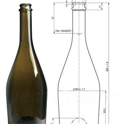 Champagne Glass Bottle