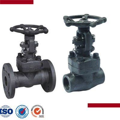 Forged Steel Female Threaded And Socket Welded Gate Valve
