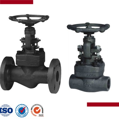 Forged Steel Flange And Butt-Welded Globe Valve