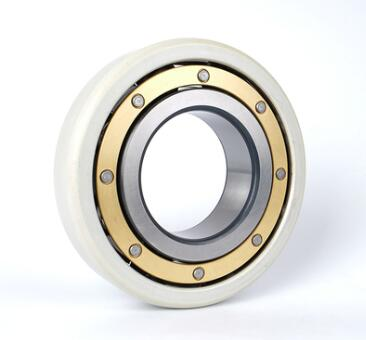 INSOCOAT Deep Groove Ball Bearings
