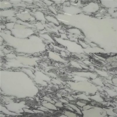 Arabescato White Polished Marble Random & Tile