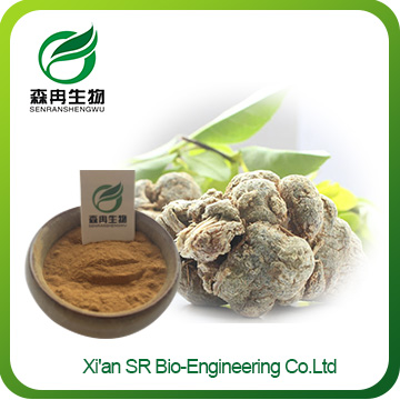 San Qi Powder,Wholesale Panax Notoginseng Extract