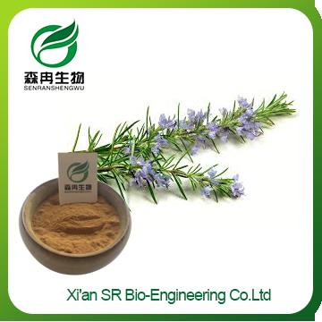 Rosemary Extract Powder,Factory Supply High Quality Rosmarinus Officinalis Extract,Rosemary Extract Antioxidant
