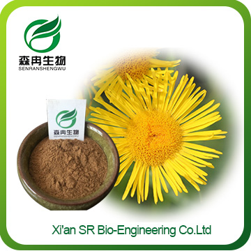 Inula powder,China Supplier Hot Sale Elecampane Extract,top Quality Inula Helenium Extract
