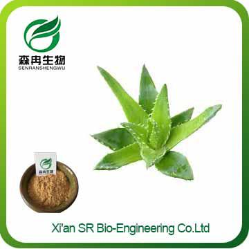 Aloe Vera Extract Powder,100% Natural High Quality Aloe Vera Powder,Factory Supply Aloe Extract