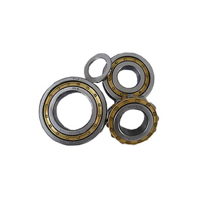 Single Row Cylindrical Roller Bearings
